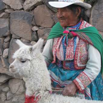 My favourite - this can only be Peru !