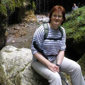 Gorge - magical flora and fauna