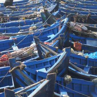 Blue fishing boats, Essaouira