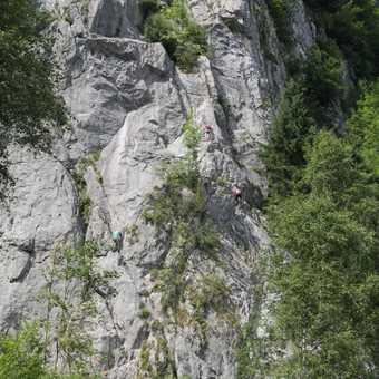 local rock climbers