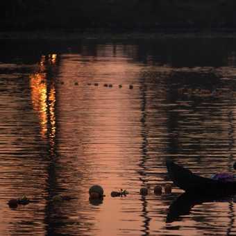 Dawn at Kerela