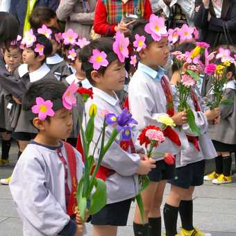 Children celebrating Buddha's birthday, Sensjo Ji Temple, Tokyo
