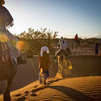 Camel ride_M'hamid_02