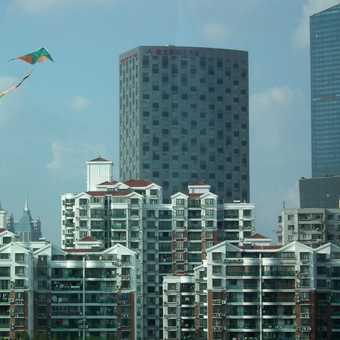 Shanghai kite