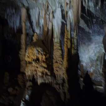 Day 7 - Inside the famous Postojnska Jama Cave