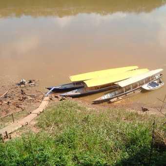 Amazon Jungle Motorised Canoes at Explorer Inn
