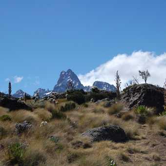 Mount Kenya - Old Moses Hut to Shipton's Camp