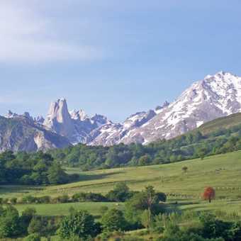 El naranjo de Bunes in the early morning