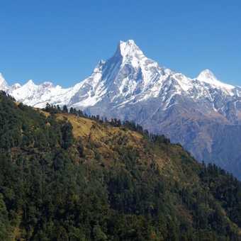 Machhapuchhre - Sacred mountain