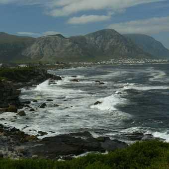 Hermanus Coastline