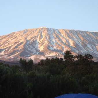Early morning Kilimanjaro from camp 1