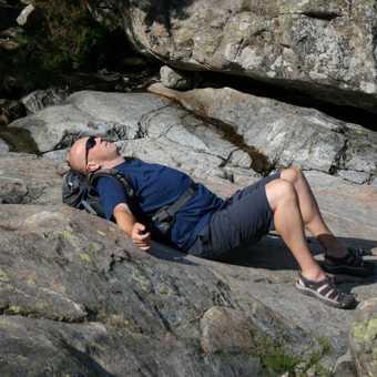 Doug reclining