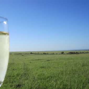CHampagne breakfast on Mara