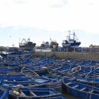 Resting before the Storm, Essaouira fishing boats