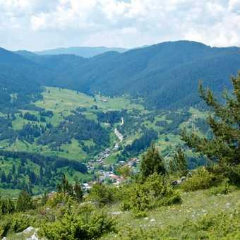 Yagodina from Sveti Ilya