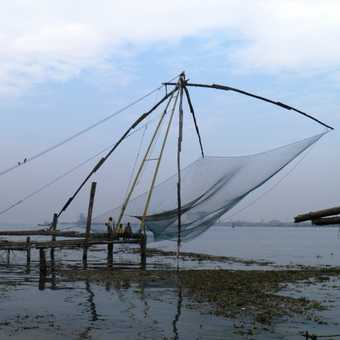 Kochi - Chinese fishing nets