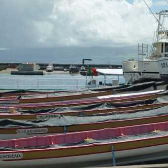 Old whaling boats, now used for racing