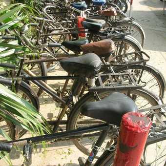 Indian Cycle Rack