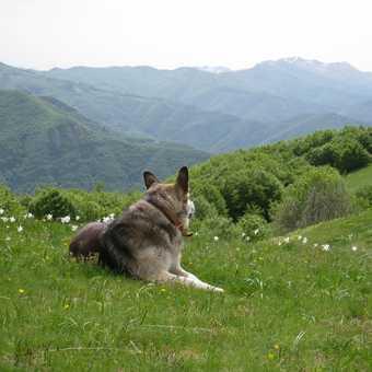 Sabina admiring the view
