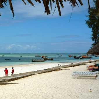 Beach - Zanzibar