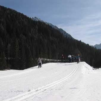 First downhills