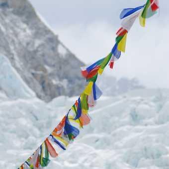 On trek in the Everest Valley
