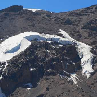 Arrow Glacier, gone in 20 years or less!