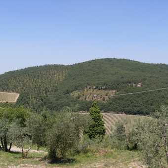 View en-route to Castellina