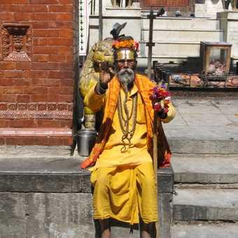 A local sadhu