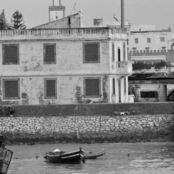 Around the harbour at Essaouira
