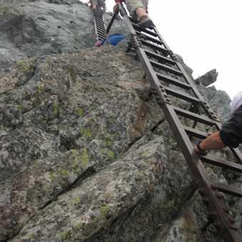 A few more ladders...