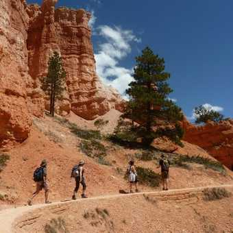 Walking through Bryce Canyon