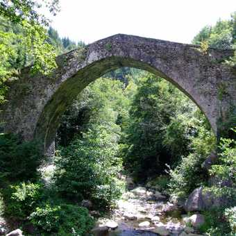 tuscan bridge