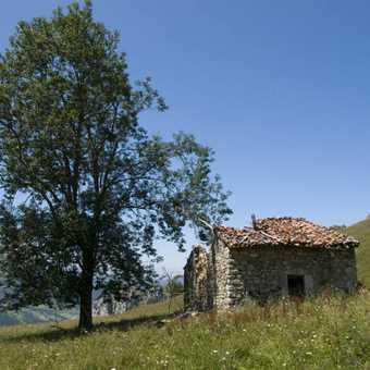 hut in meadow