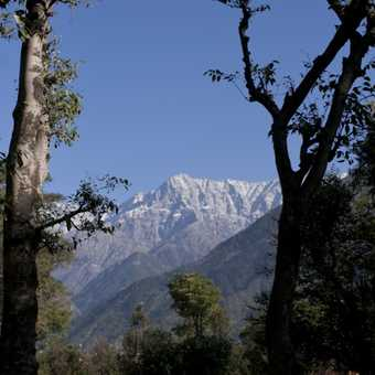 Mountain view from Dharamsala