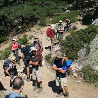 The final push over the Punta di l'Acellu