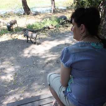 Helen & visitor - Gunn Camp, Okavango Delta
