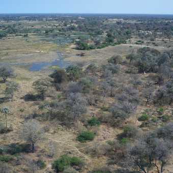 Flying to Linyanti - Okavango Delta
