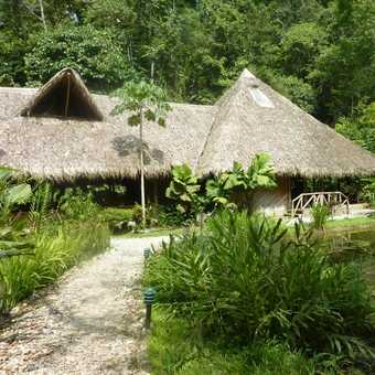 Our rooms in Esquinas Rainforest Lodge
