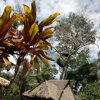 Tambopata Jungle Lodge