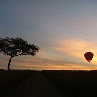 Balloon safari Kenyan sunrise