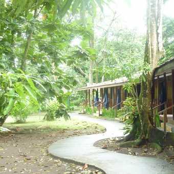 Laguna Lodge, Tortuguero
