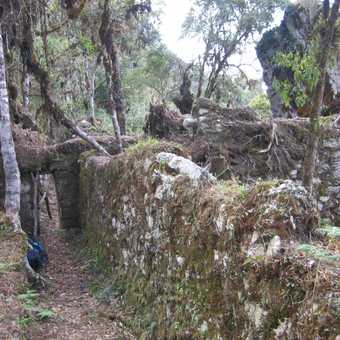 We diverted to see this fascinating unrestored Inca site