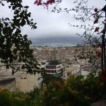 Market - Fez