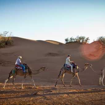 Camel ride_M'hamid_04