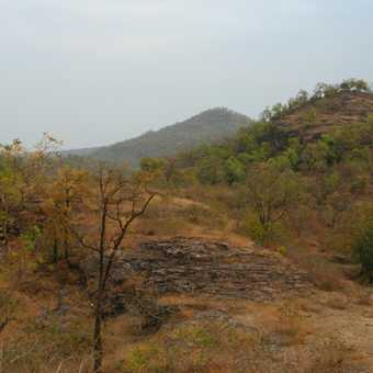 The landscape of Bandhavgarh NP