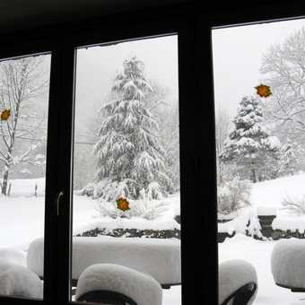 View from dining room window