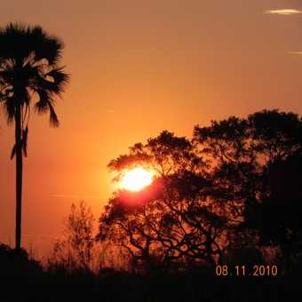 Okavango sunset