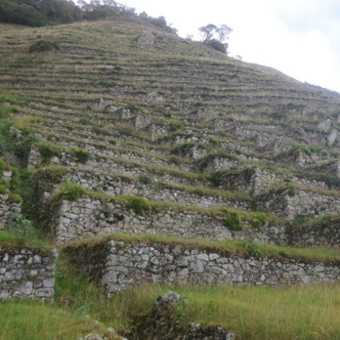 http://andeanamazon.com/