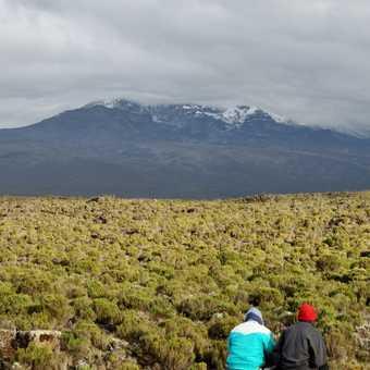 Porters looking across the Plateau towards Kibo